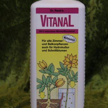 VITANAL Topf- und Kübelpflanzen für Zimmer und Balkon