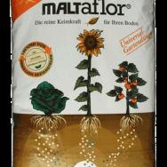 Maltaflor