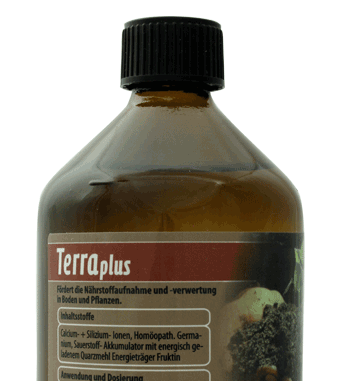 Terraplus