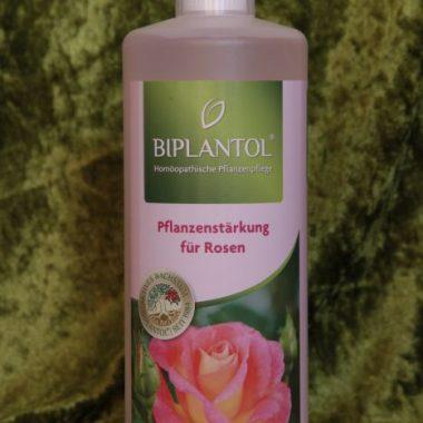 Biplantol Rosen